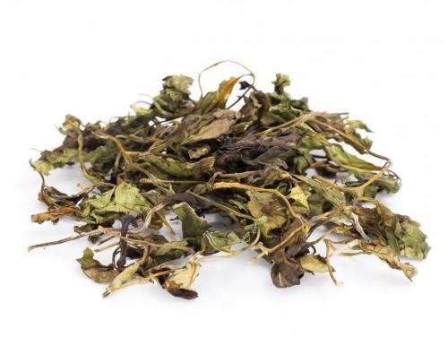 2020 Wild White Tea