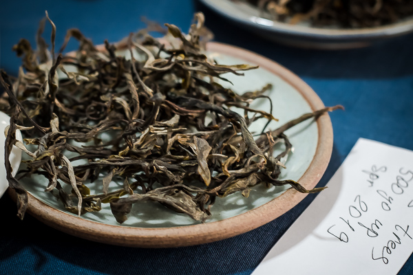 Mao cha (young loose pu-erh tea) from 500-year-old trees of Thaialand